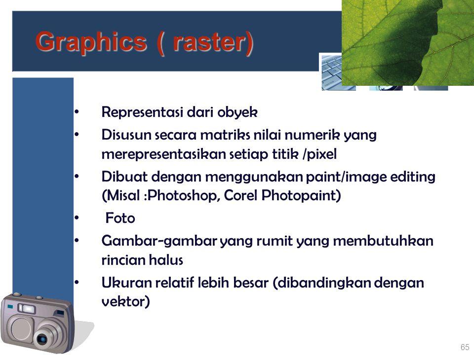 Graphics ( raster) Representasi dari obyek Disusun secara matriks nilai numerik yang merepresentasikan setiap titik /pixel Dibuat dengan menggunakan p
