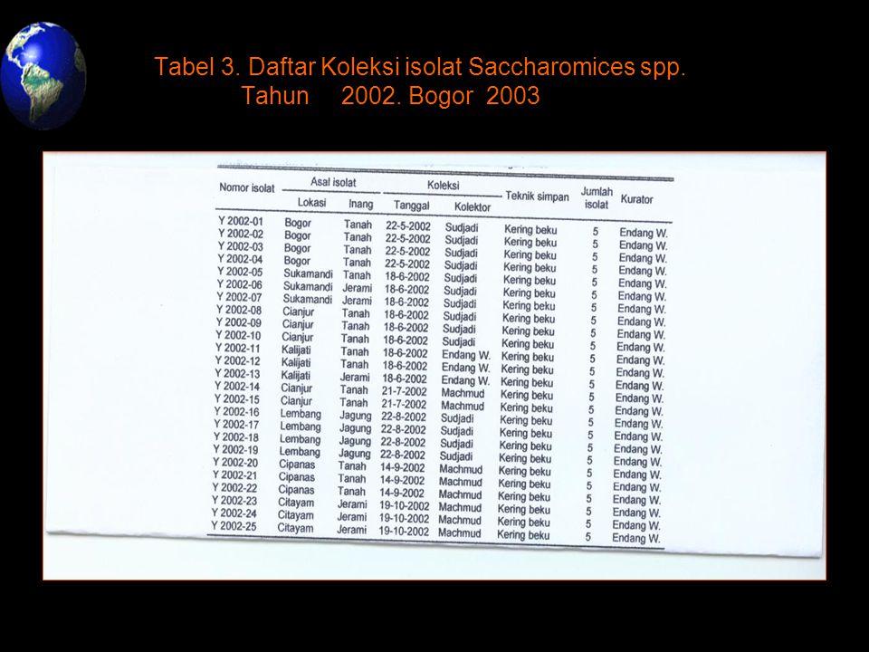 Tabel 3. Daftar Koleksi isolat Saccharomices spp. Tahun 2002. Bogor 2003