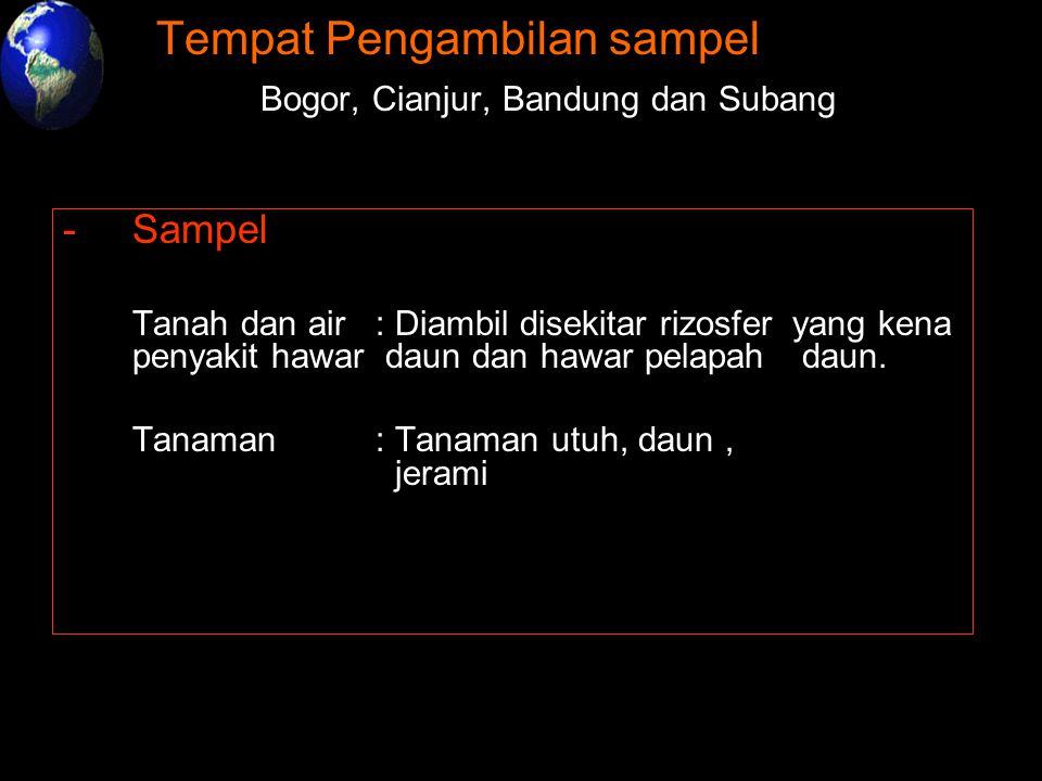 -Tempat Pengambilan sampel : - Bogor, Cianjur, Bandung dan Subang -Sampel : Tanah dan air: Diambil disekitar rizosfer yang kena penyakit hawar daun da