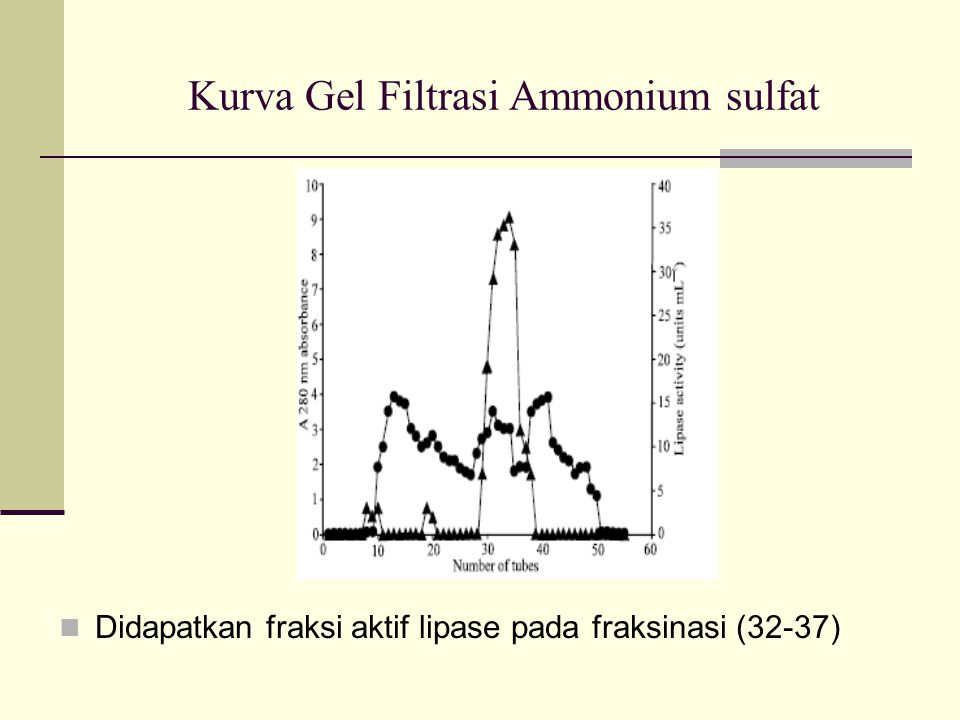 Kurva Gel Filtrasi Ammonium sulfat Didapatkan fraksi aktif lipase pada fraksinasi (32-37)