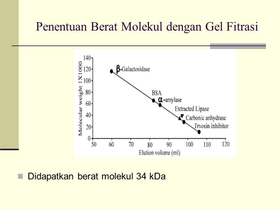 Penentuan Berat Molekul dengan Gel Fitrasi Didapatkan berat molekul 34 kDa