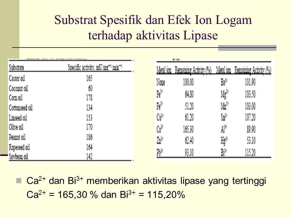 Substrat Spesifik dan Efek Ion Logam terhadap aktivitas Lipase Ca 2+ dan Bi 3+ memberikan aktivitas lipase yang tertinggi Ca 2+ = 165,30 % dan Bi 3+ = 115,20%