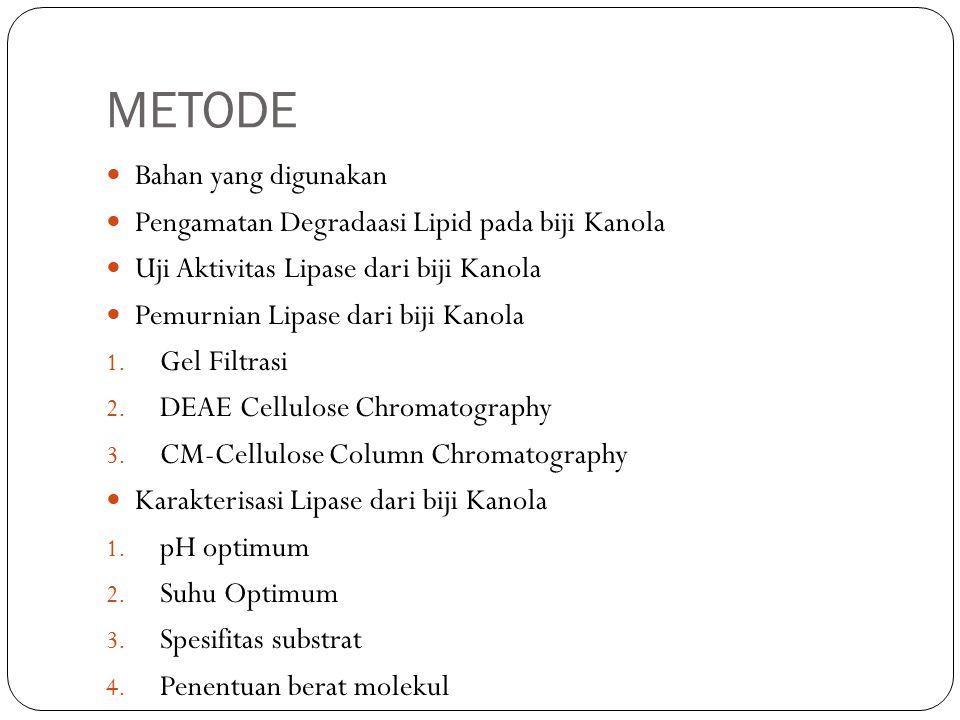 METODE Bahan yang digunakan Pengamatan Degradaasi Lipid pada biji Kanola Uji Aktivitas Lipase dari biji Kanola Pemurnian Lipase dari biji Kanola 1.