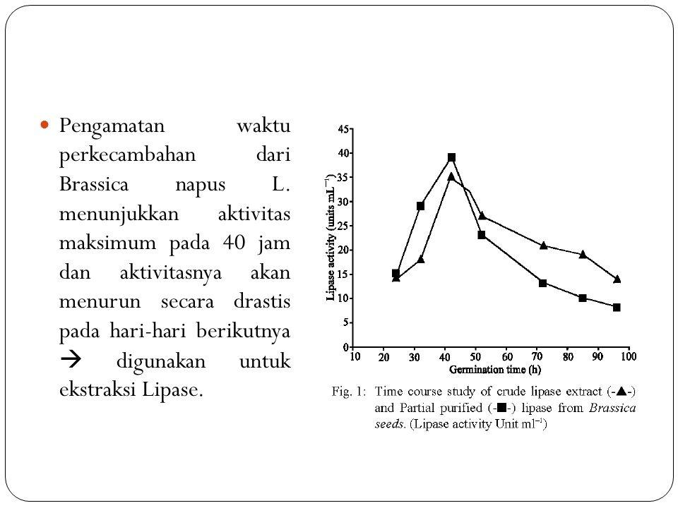 Pengamatan waktu perkecambahan dari Brassica napus L.