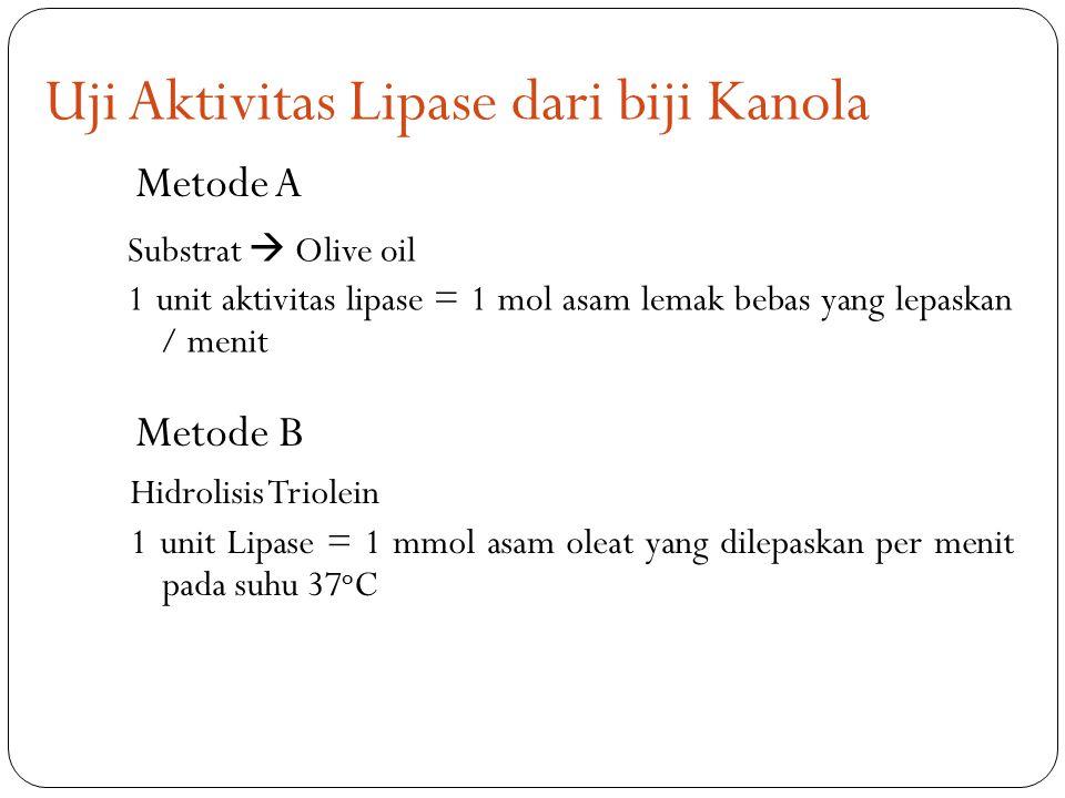 Uji Aktivitas Lipase dari biji Kanola Substrat  Olive oil 1 unit aktivitas lipase = 1 mol asam lemak bebas yang lepaskan / menit Hidrolisis Triolein 1 unit Lipase = 1 mmol asam oleat yang dilepaskan per menit pada suhu 37 o C Metode A Metode B