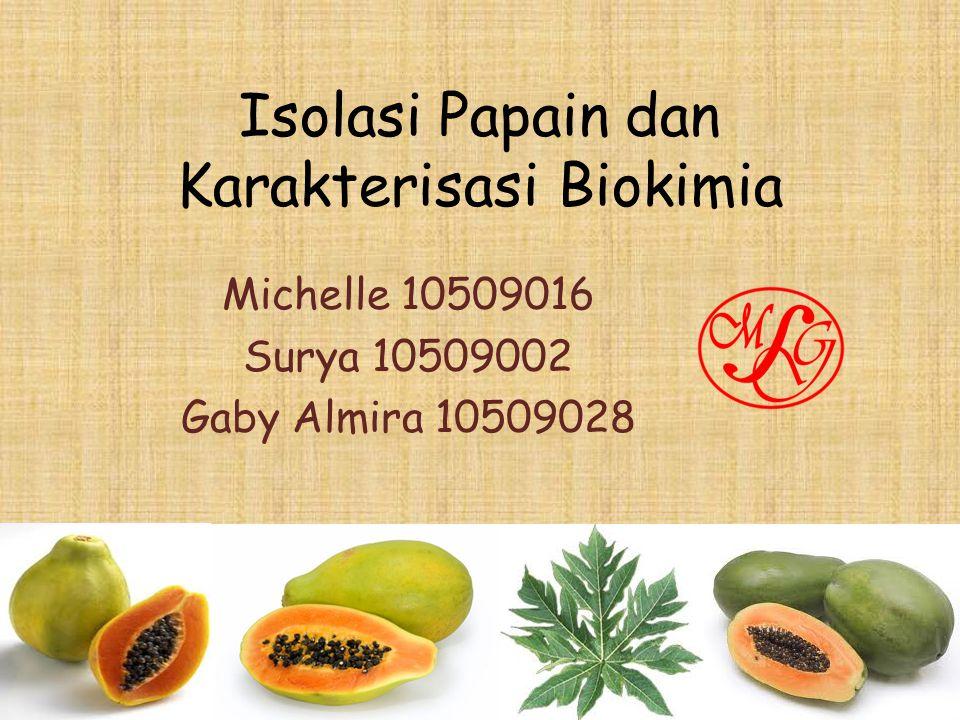Isolasi Papain dan Karakterisasi Biokimia Michelle 10509016 Surya 10509002 Gaby Almira 10509028