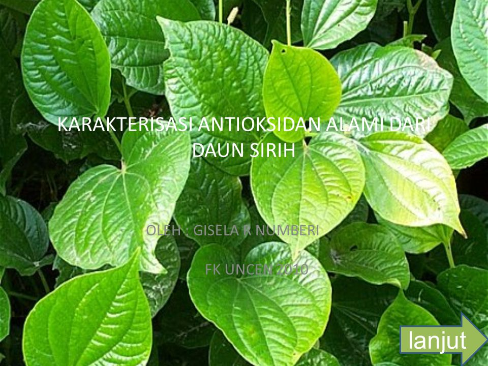 Perumusan Masalah  Bagaimana proses pembuatan antioksidan alami dari daun sirih.