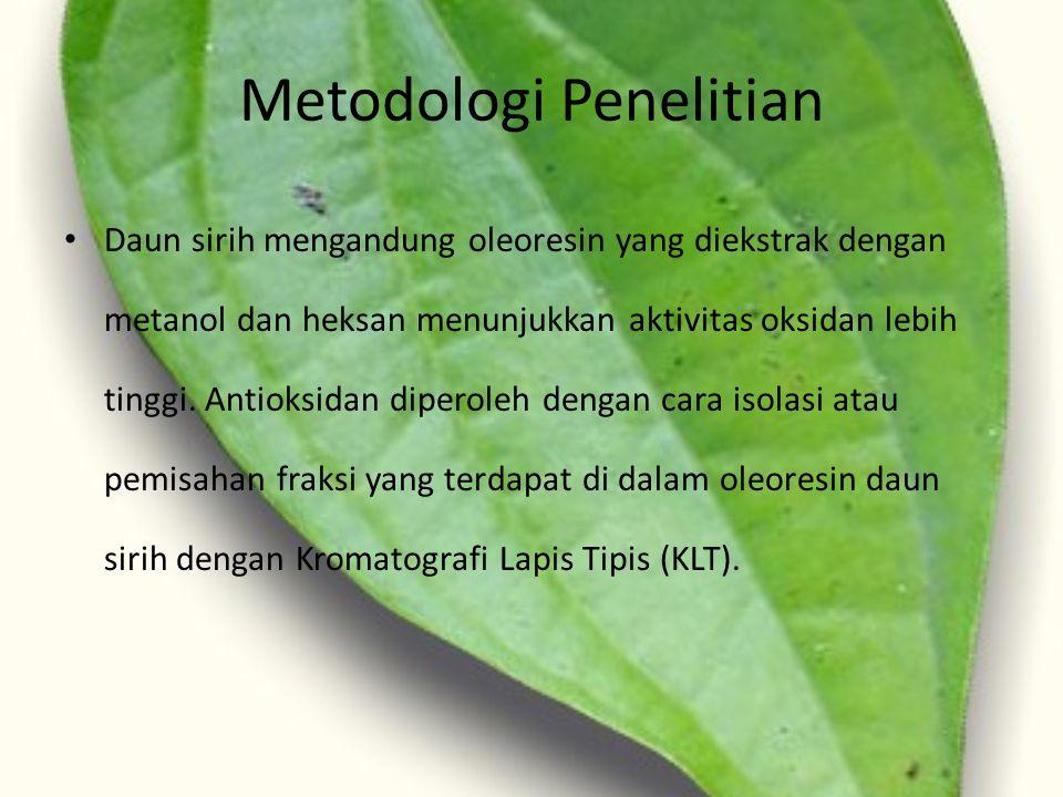 Metodologi Penelitian Daun sirih mengandung oleoresin yang diekstrak dengan metanol dan heksan menunjukkan aktivitas oksidan lebih tinggi. Antioksidan