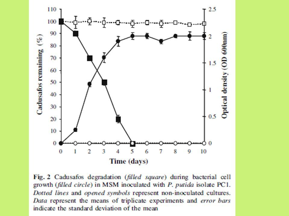 Effect of temperature and carbon sources on degradation of cadusafos ● Laju degradasi cadusafos oleh PC1 dipengaruhi oleh temperatur ● Laju degradasi 0.3, 0.6, 0.8, dan 0.04 mg/l/hari pada 10, 20, 37, dan 45 0 C ● Pada temperatur 20 dan 37 o C, degradasi cadusafos mencapai 100% selama 6 dan 5 hari ● Pada temperatur 45 0 C, selama 10 hari hanya 35% cadusafos yang terdegradasi