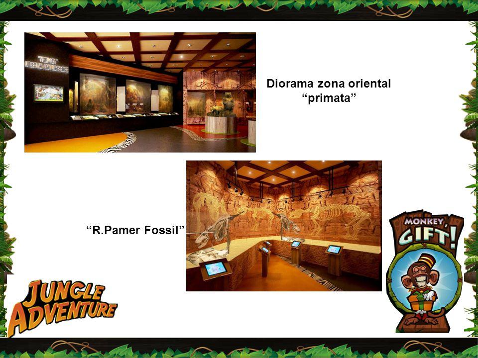 "Diorama zona oriental ""primata"" ""R.Pamer Fossil"""
