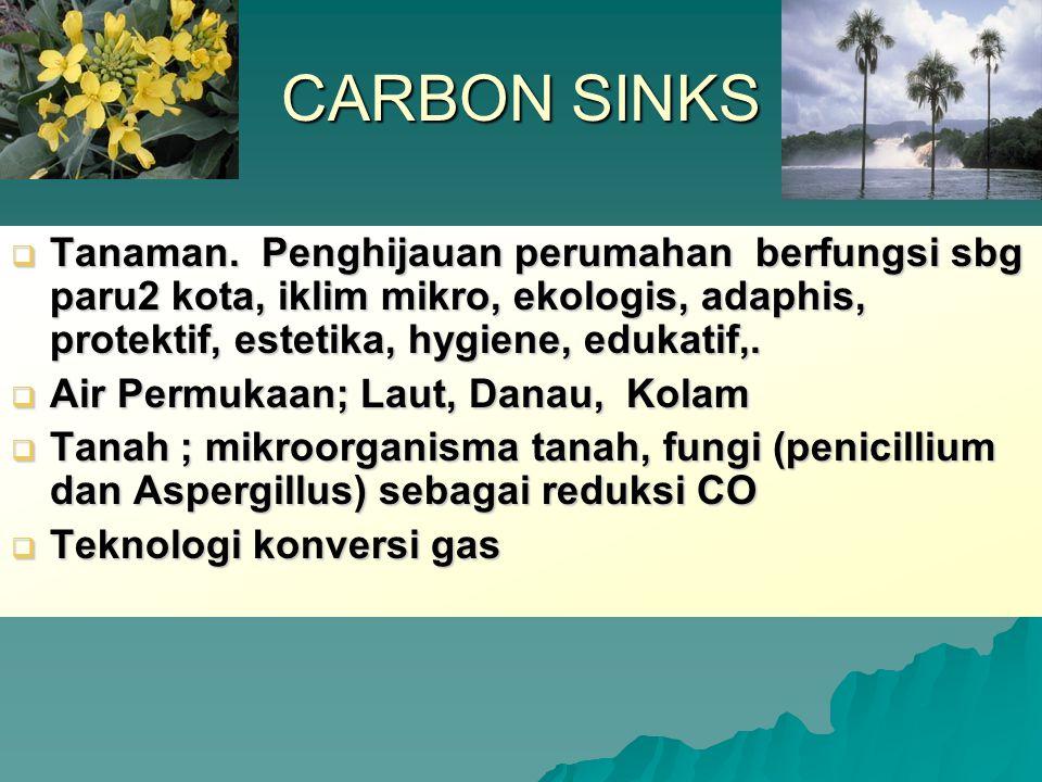CARBON SINKS  Tanaman. Penghijauan perumahan berfungsi sbg paru2 kota, iklim mikro, ekologis, adaphis, protektif, estetika, hygiene, edukatif,.  Air
