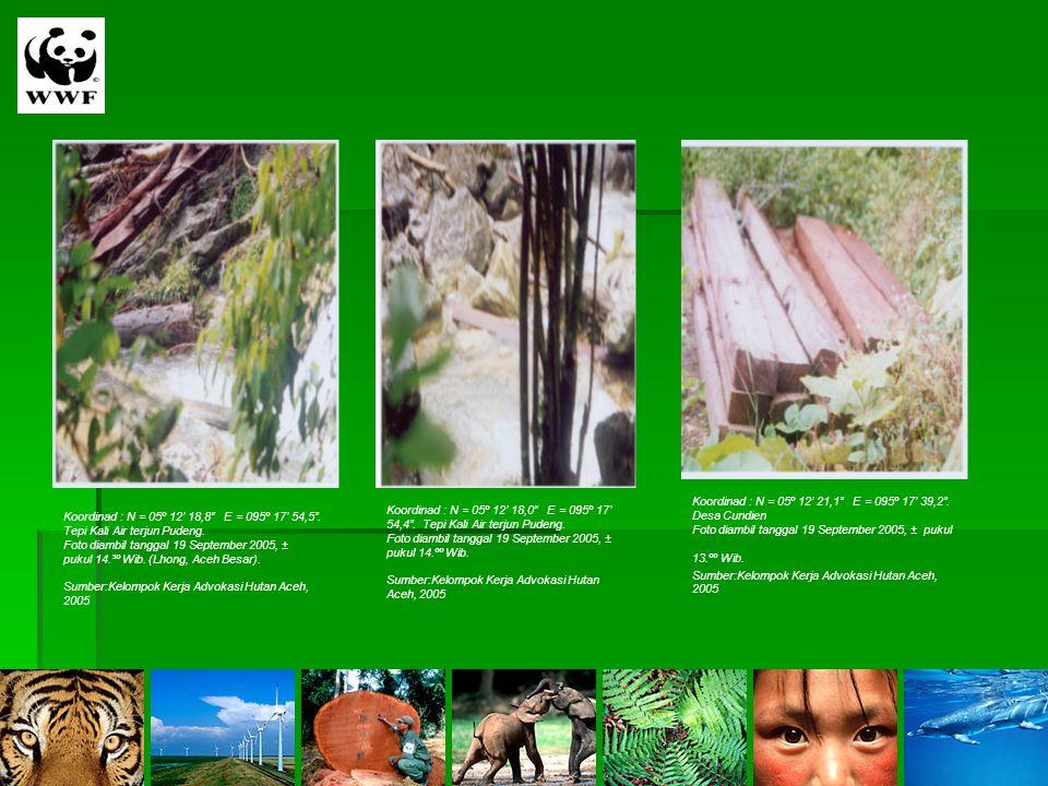 "Koordinad : N = 05º 12' 18,8"" E = 095º 17' 54,5"". Tepi Kali Air terjun Pudeng. Foto diambil tanggal 19 September 2005, ± pukul 14.³º Wib. (Lhong, Aceh"