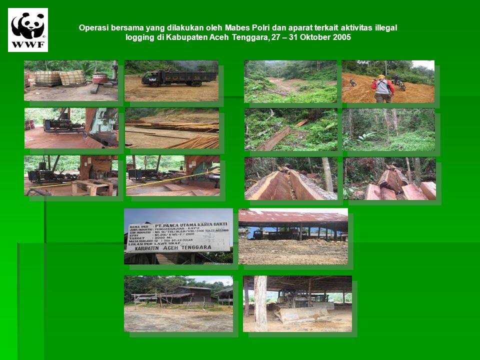 Operasi bersama yang dilakukan oleh Mabes Polri dan aparat terkait aktivitas illegal logging di Kabupaten Aceh Tenggara, 27 – 31 Oktober 2005
