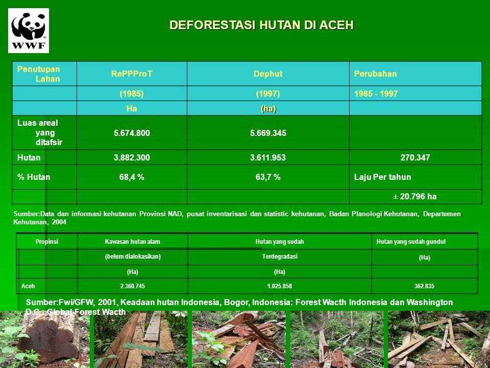 DEFORESTASI HUTAN DI ACEH Penutupan Lahan RePPProTDephutPerubahan (1985)(1997)1985 - 1997 Ha(ha) Luas areal yang ditafsir 5.674.8005.669.345 Hutan3.88
