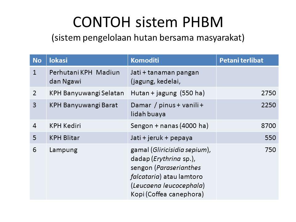 CONTOH sistem PHBM (sistem pengelolaan hutan bersama masyarakat) NolokasiKomoditiPetani terlibat 1Perhutani KPH Madiun dan Ngawi Jati + tanaman pangan