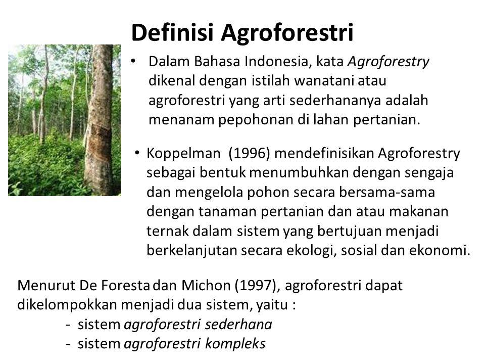 Definisi Agroforestri Dalam Bahasa Indonesia, kata Agroforestry dikenal dengan istilah wanatani atau agroforestri yang arti sederhananya adalah menanam pepohonan di lahan pertanian.