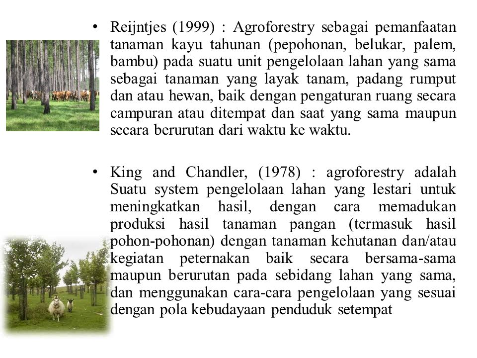 Reijntjes (1999) : Agroforestry sebagai pemanfaatan tanaman kayu tahunan (pepohonan, belukar, palem, bambu) pada suatu unit pengelolaan lahan yang sama sebagai tanaman yang layak tanam, padang rumput dan atau hewan, baik dengan pengaturan ruang secara campuran atau ditempat dan saat yang sama maupun secara berurutan dari waktu ke waktu.