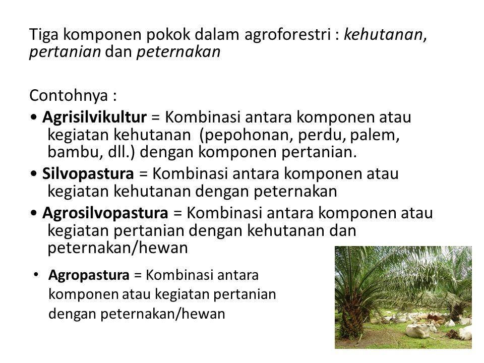 Tiga komponen pokok dalam agroforestri : kehutanan, pertanian dan peternakan Contohnya : Agrisilvikultur = Kombinasi antara komponen atau kegiatan kehutanan (pepohonan, perdu, palem, bambu, dll.) dengan komponen pertanian.