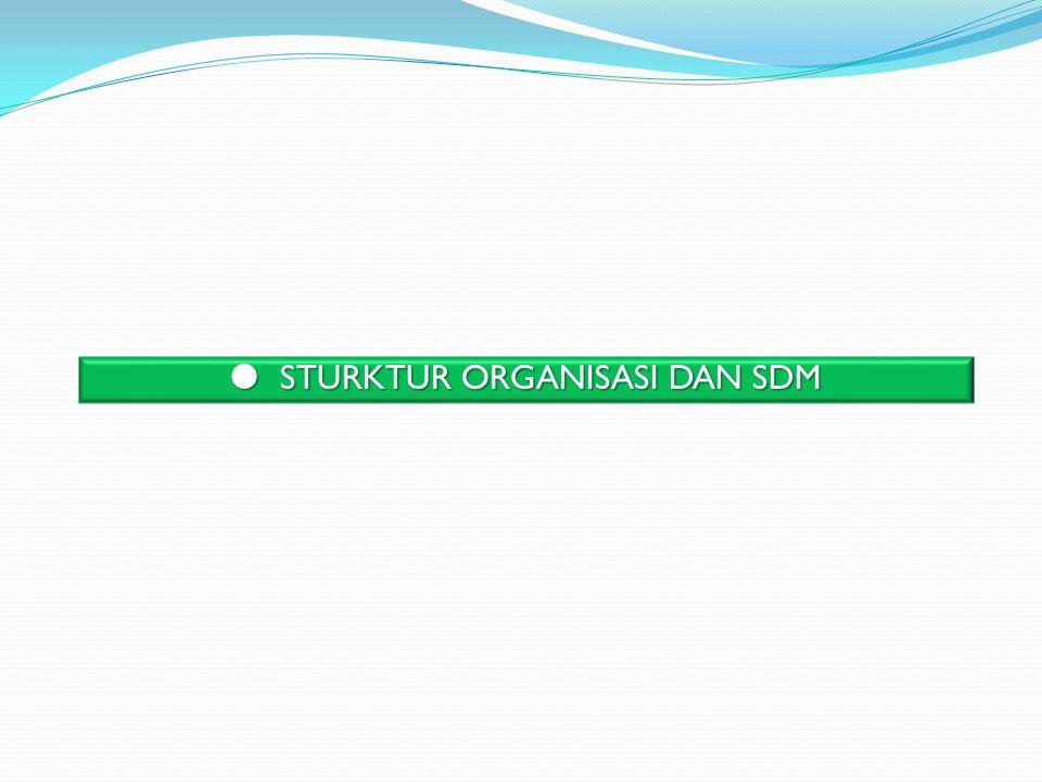  STURKTUR ORGANISASI DAN SDM