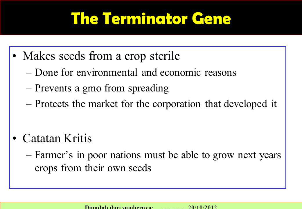 The Terminator Gene Makes seeds from a crop sterile –Done for environmental and economic reasons –Prevents a gmo from spreading –Protects the market for the corporation that developed it Catatan Kritis –Farmer's in poor nations must be able to grow next years crops from their own seeds Diunduh dari sumbernya: ………… 20/10/2012