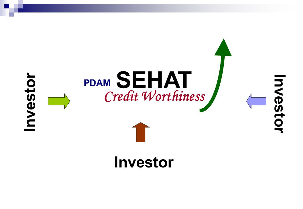PDAM SEHAT Credit Worthiness Investor