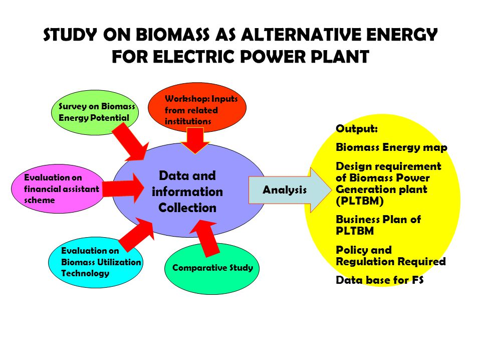 STUDY ON BIOMASS AS ALTERNATIVE ENERGY FOR ELECTRIC POWER PLANT Data and information Collection Survey on Biomass Energy Potential Evaluation on Biomass Utilization Technology Evaluation on financial assistant scheme Workshop: Inputs from related institutions Analysis Output: Biomass Energy map Design requirement of Biomass Power Generation plant (PLTBM) Business Plan of PLTBM Policy and Regulation Required Data base for FS Comparative Study