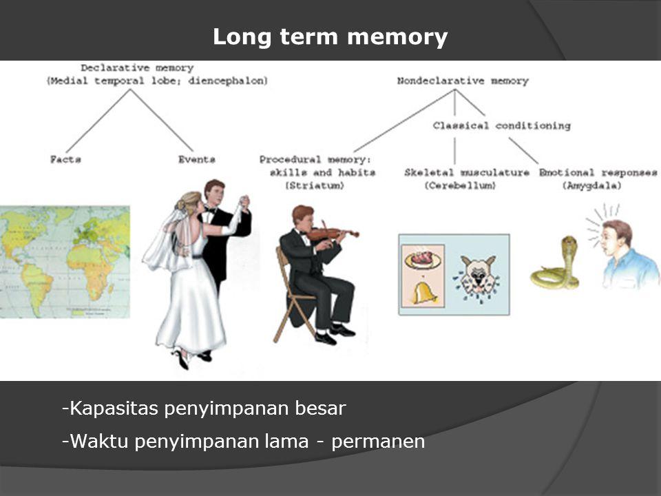 Long term memory -Kapasitas penyimpanan besar -Waktu penyimpanan lama - permanen