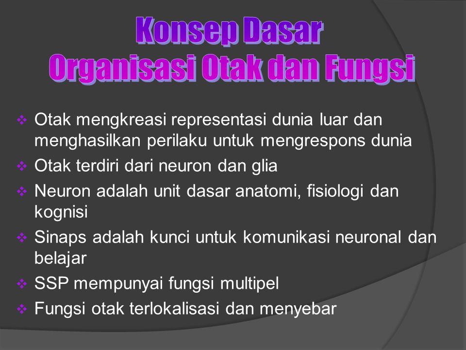  Otak mengkreasi representasi dunia luar dan menghasilkan perilaku untuk mengrespons dunia  Otak terdiri dari neuron dan glia  Neuron adalah unit dasar anatomi, fisiologi dan kognisi  Sinaps adalah kunci untuk komunikasi neuronal dan belajar  SSP mempunyai fungsi multipel  Fungsi otak terlokalisasi dan menyebar