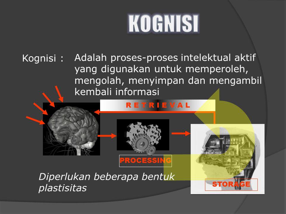 Kognisi : Adalah proses-proses intelektual aktif yang digunakan untuk memperoleh, mengolah, menyimpan dan mengambil kembali informasi PROCESSING R E T R I E V A L STORAGE Diperlukan beberapa bentuk plastisitas