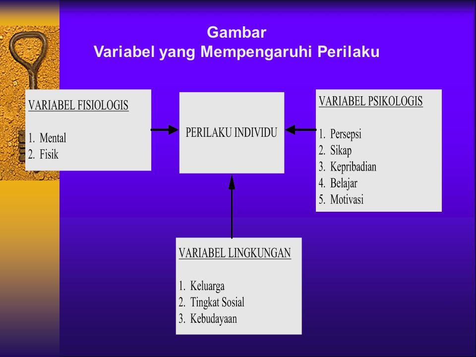 VARIABEL YG MEMPENGARUHI PERILAKU INDIVIDU  Variabel Fisilogis ; kemampuan fisik & mental  Variabel Psikologis ; persepsi, sikap, kepribadian, belaj