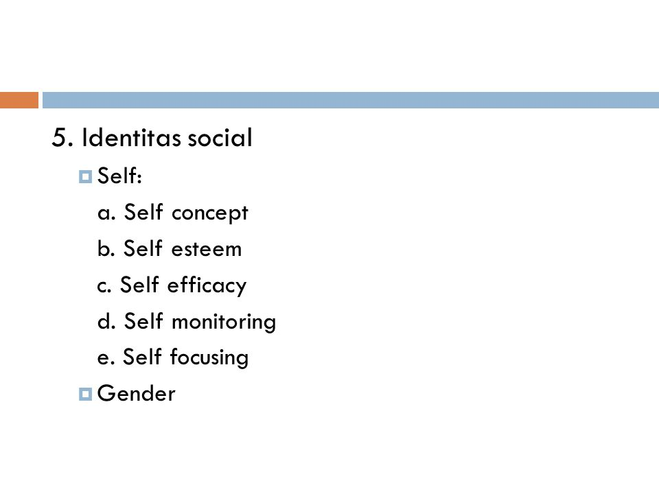 5. Identitas social  Self: a. Self concept b. Self esteem c. Self efficacy d. Self monitoring e. Self focusing  Gender