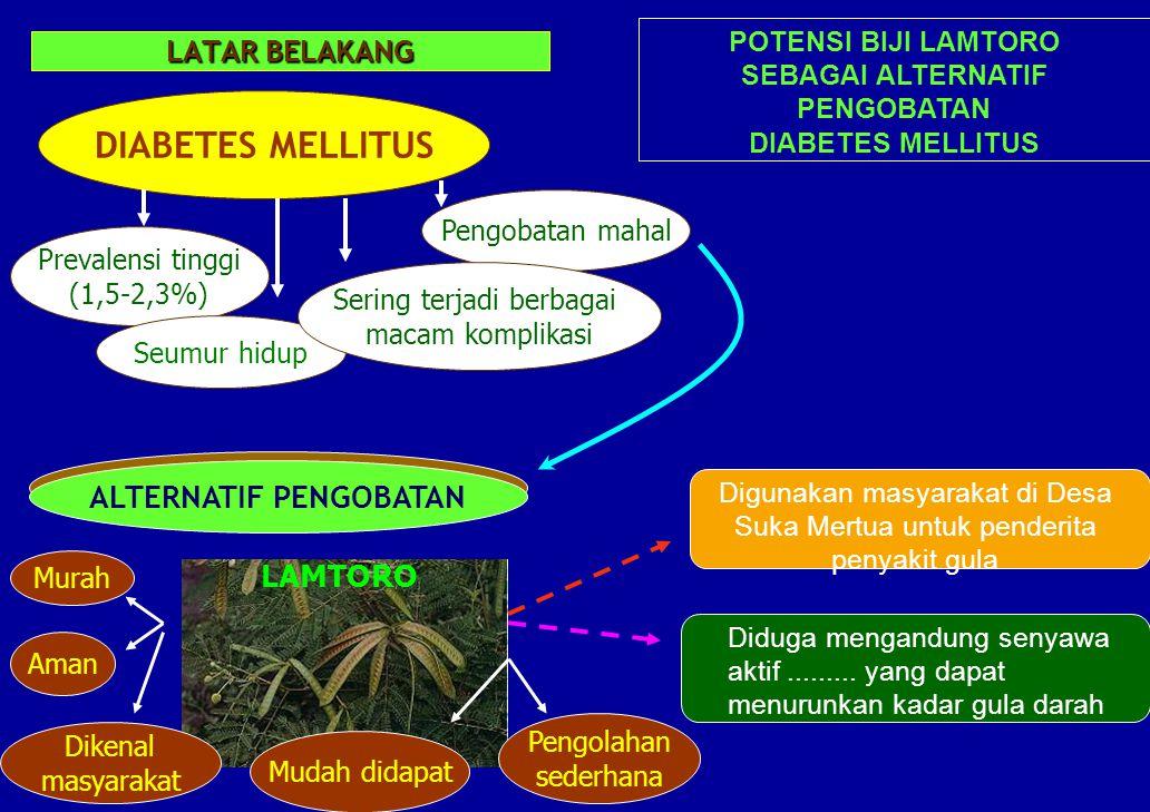 LATAR BELAKANG DIABETES MELLITUS Prevalensi tinggi (1,5-2,3%) Pengobatan mahal Seumur hidup Sering terjadi berbagai macam komplikasi LAMTORO ALTERNATI