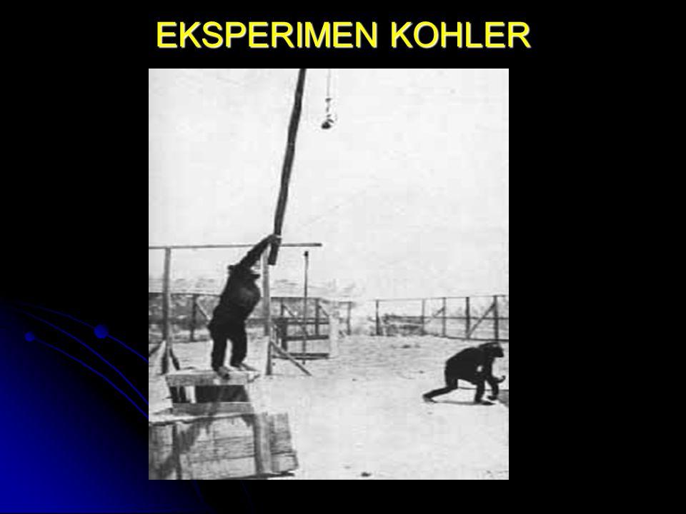 EKSPERIMEN KOHLER