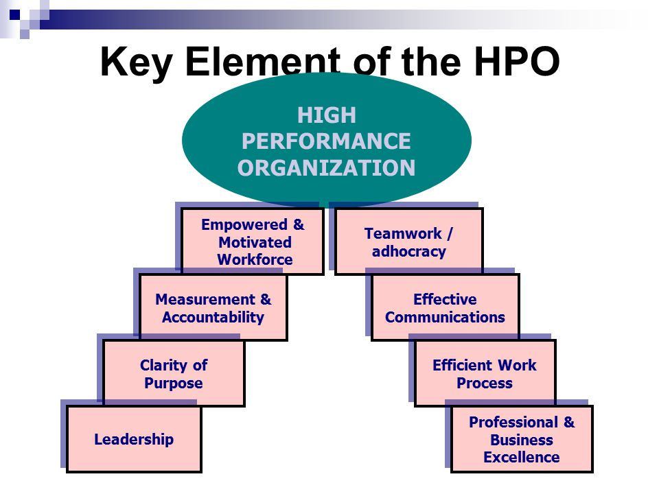 Key Element of the HPO HIGH PERFORMANCE ORGANIZATION Teamwork / adhocracy Teamwork / adhocracy Empowered & Motivated Workforce Empowered & Motivated W