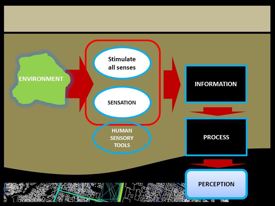 Stimulate all senses SENSATION INFORMATION PROCESS PERCEPTION ENVIRONMENT HUMAN SENSORY TOOLS