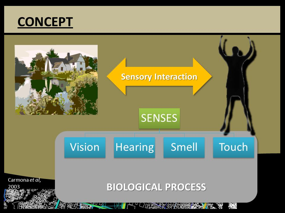 CONCEPT BIOLOGICAL PROCESS Sensory Interaction SENSES VisionHearingSmellTouch Carmona et al, 2003