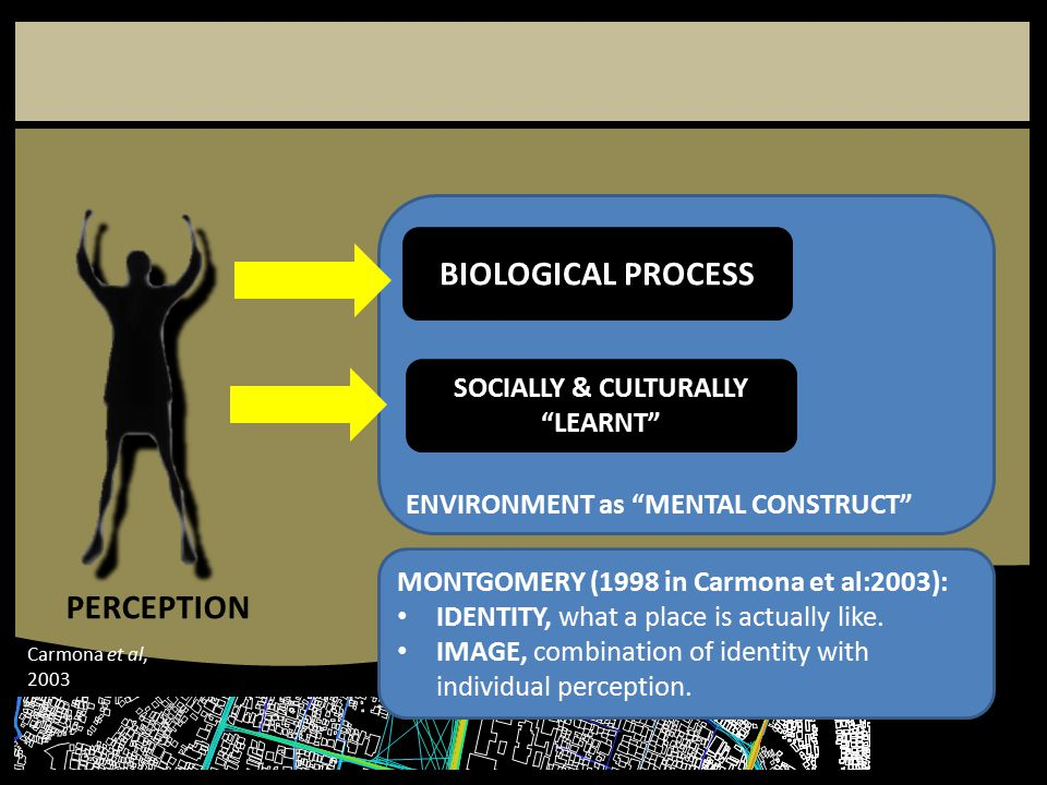 """ENVIRONMENT as """"MENTAL CONSTRUCT"""" BIOLOGICAL PROCESS SOCIALLY & CULTURALLY """"LEARNT"""" PERCEPTION MONTGOMERY (1998 in Carmona et al:2003): IDENTITY, what"""