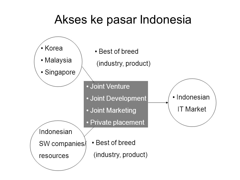 Akses ke pasar Indonesia Korea Malaysia Singapore Indonesian SW companies/ resources Best of breed (industry, product) Indonesian IT Market Joint Vent