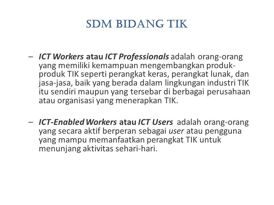 SDM bidang TIK –ICT Workers atau ICT Professionals adalah orang-orang yang memiliki kemampuan mengembangkan produk- produk TIK seperti perangkat keras