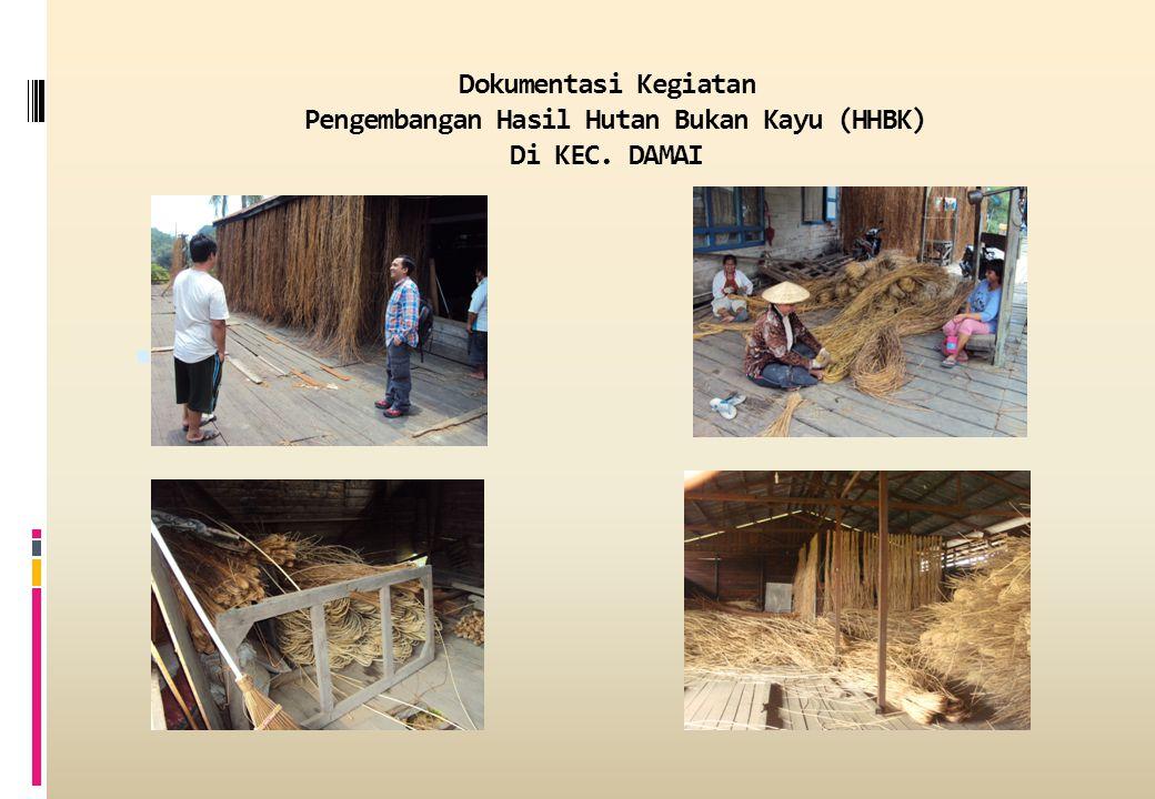 Dokumentasi Kegiatan Pengembangan Hasil Hutan Bukan Kayu (HHBK) Di KEC. DAMAI 