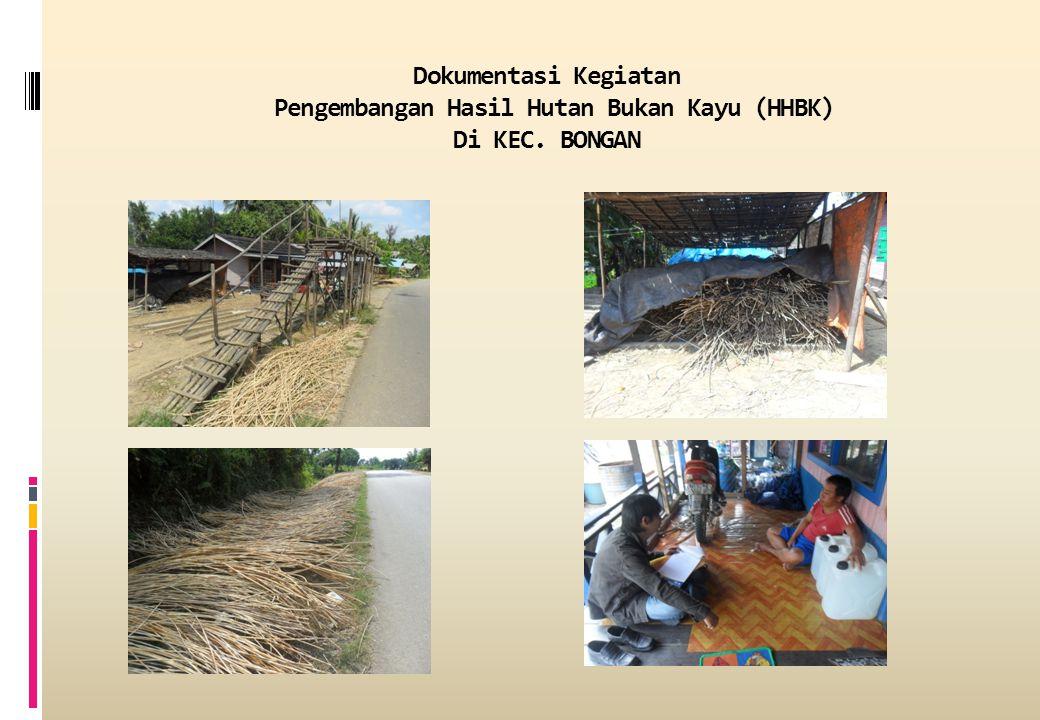 Dokumentasi Kegiatan Pengembangan Hasil Hutan Bukan Kayu (HHBK) Di KEC. BONGAN