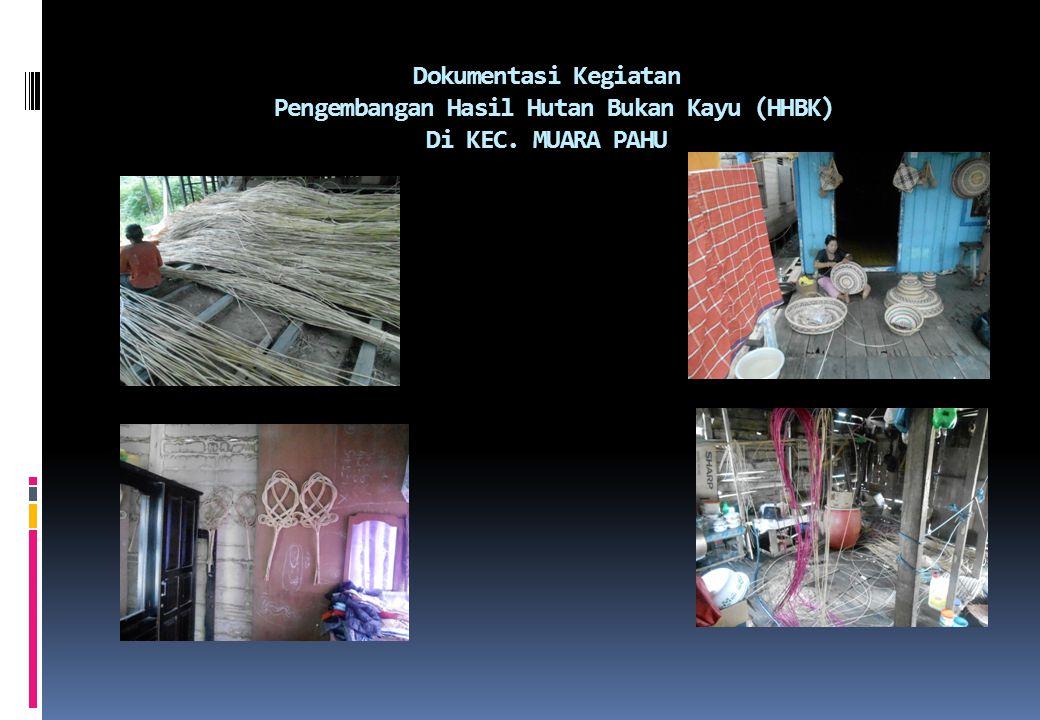 Dokumentasi Kegiatan Pengembangan Hasil Hutan Bukan Kayu (HHBK) Di KEC. MUARA PAHU