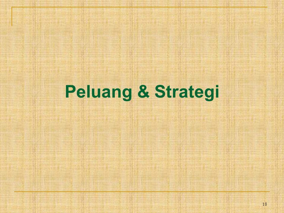 18 Peluang & Strategi