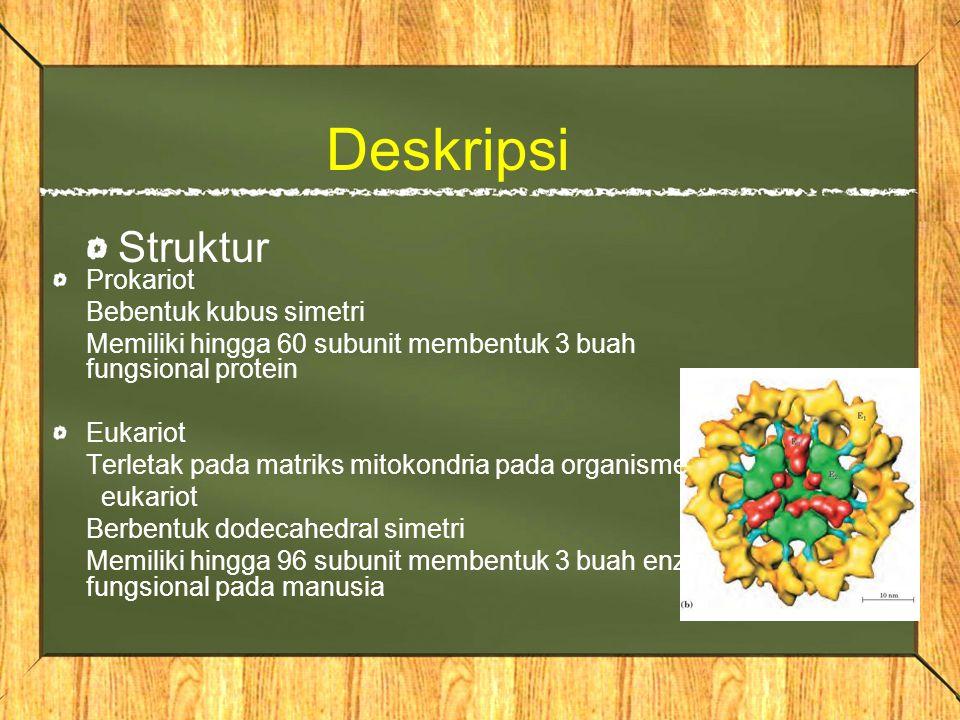Deskripsi Struktur Prokariot Bebentuk kubus simetri Memiliki hingga 60 subunit membentuk 3 buah fungsional protein Eukariot Terletak pada matriks mitokondria pada organisme eukariot Berbentuk dodecahedral simetri Memiliki hingga 96 subunit membentuk 3 buah enzim fungsional pada manusia
