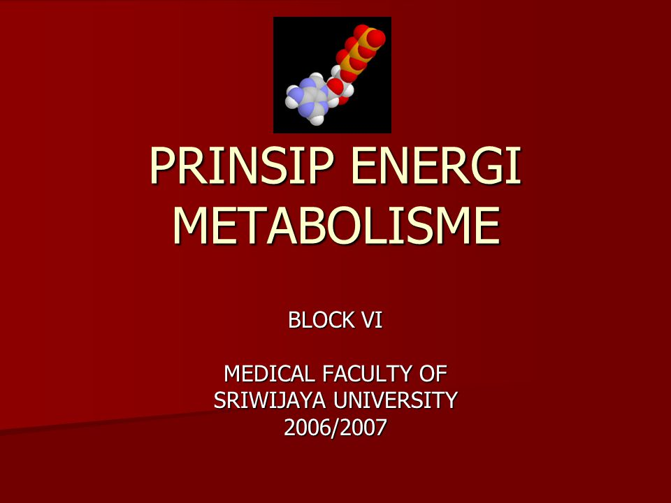 PRINSIP ENERGI METABOLISME BLOCK VI MEDICAL FACULTY OF SRIWIJAYA UNIVERSITY 2006/2007