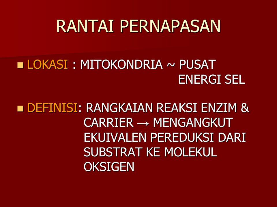 RANTAI PERNAPASAN LOKASI: MITOKONDRIA ~ PUSAT ENERGI SEL LOKASI: MITOKONDRIA ~ PUSAT ENERGI SEL DEFINISI: RANGKAIAN REAKSI ENZIM & CARRIER → MENGANGKU