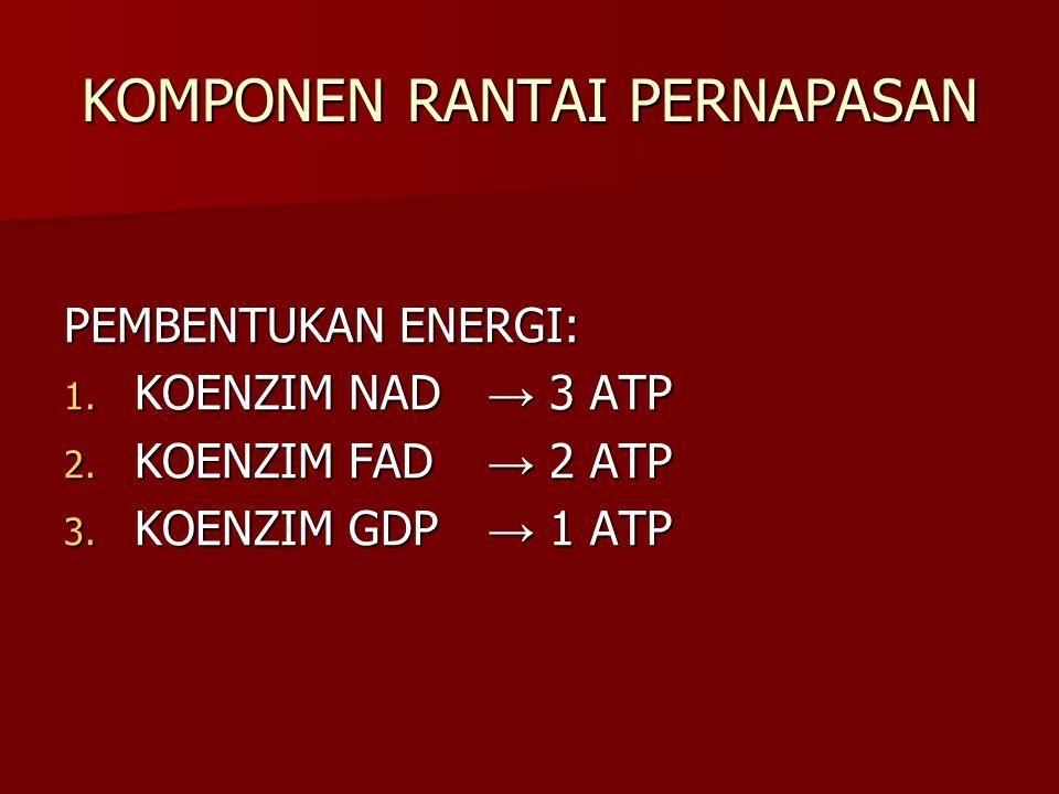 KOMPONEN RANTAI PERNAPASAN PEMBENTUKAN ENERGI: 1. KOENZIM NAD → 3 ATP 2. KOENZIM FAD → 2 ATP 3. KOENZIM GDP → 1 ATP