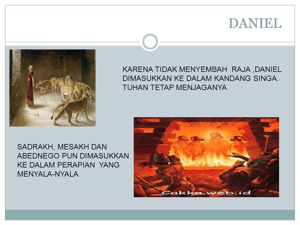 DANIEL KARENA TIDAK MENYEMBAH RAJA,DANIEL DIMASUKKAN KE DALAM KANDANG SINGA. TUHAN TETAP MENJAGANYA SADRAKH, MESAKH DAN ABEDNEGO PUN DIMASUKKAN KE DAL