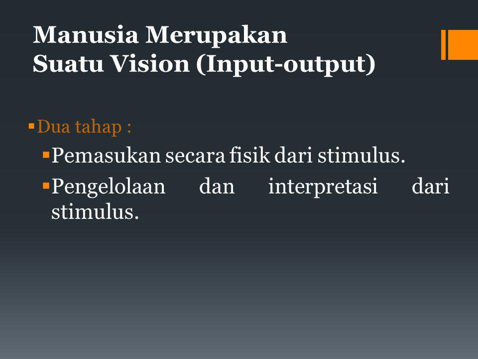 Manusia Merupakan Suatu Vision (Input-output)  Dua tahap :  Pemasukan secara fisik dari stimulus.