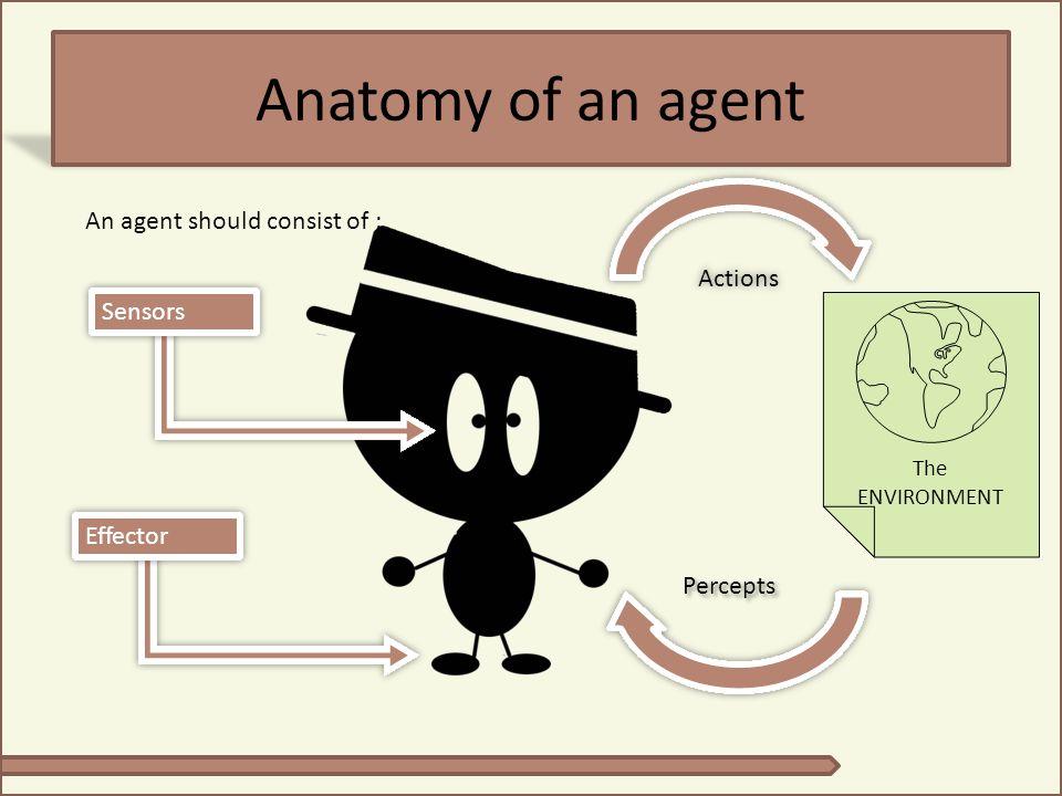 More On Agent Agent dapat berupa: manusia, robot, program komputer, dsb Program komputer yang dibuat sebagai agent, harus dijalankan pada suatu lingkungan fisik untuk memproduksi tujuan tertentu, sesuai dengan yang ditugaskan padanya Autonomous: sistem disebut autonomous apabila mampu mengembangkan dirinya berdasarkan pengalaman yang dimilikinya